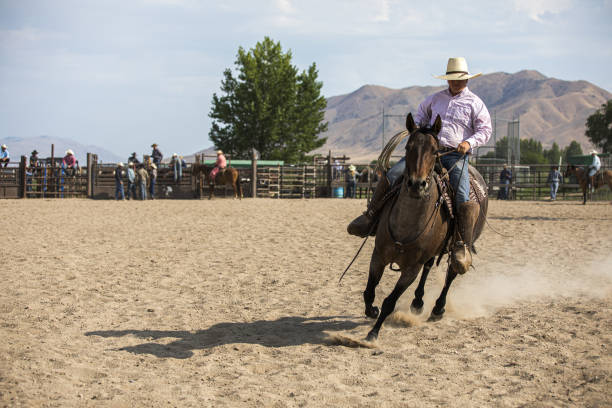 Cowboy Riding in a Rodeo Arena stock photo