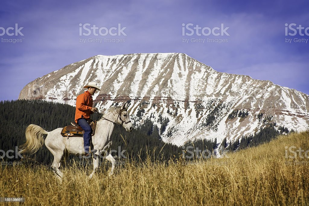 cowboy rocky mountain landscape stock photo