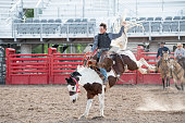 Cowboy rodeo riding bucking bronco horse in western USA