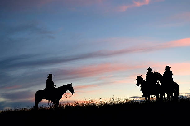 Cowboy silhouettes at first light Cowboy silhouette on horseback at dawn rancher stock pictures, royalty-free photos & images