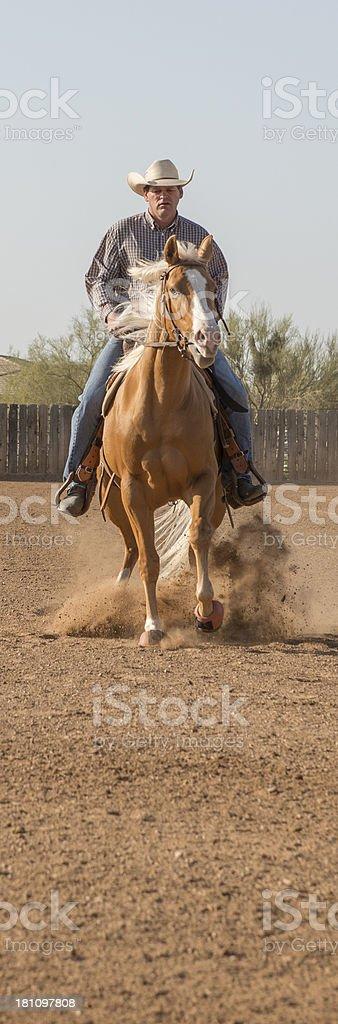 Cowboy stopping his palomino royalty-free stock photo