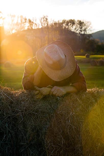 cowboy stress and fatigue - balpress bildbanksfoton och bilder