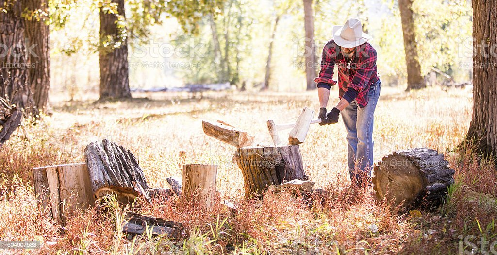 Cowboy swings axe and cuts wood out in wooded meadow stock photo