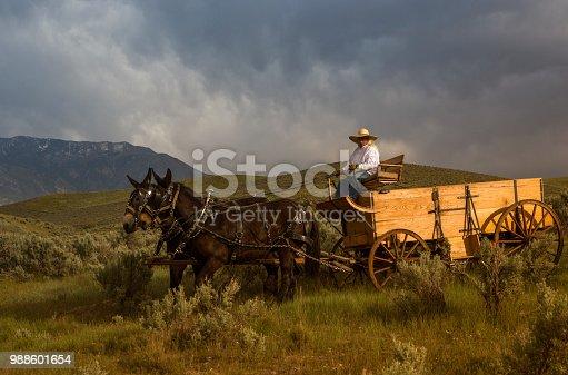 cowboy travel with horse carriage at santaquin valley of Salt lake City SLC Utah USA
