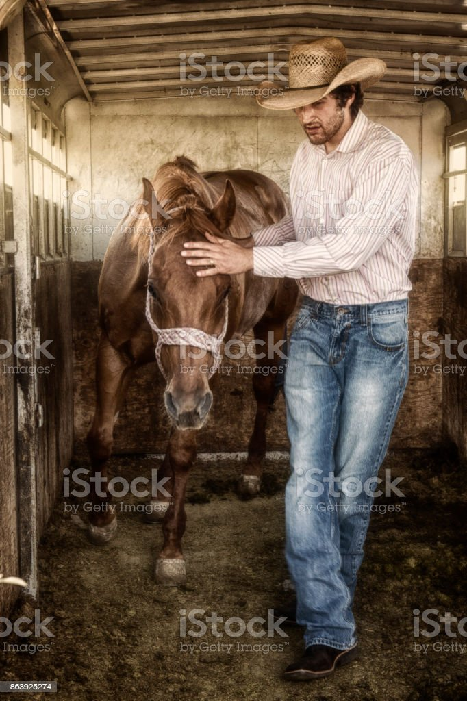 Cowboy Unloading His Horse From A Horse Trailer stock photo