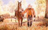 Cowboy walks  with head down guiding horse through golden field