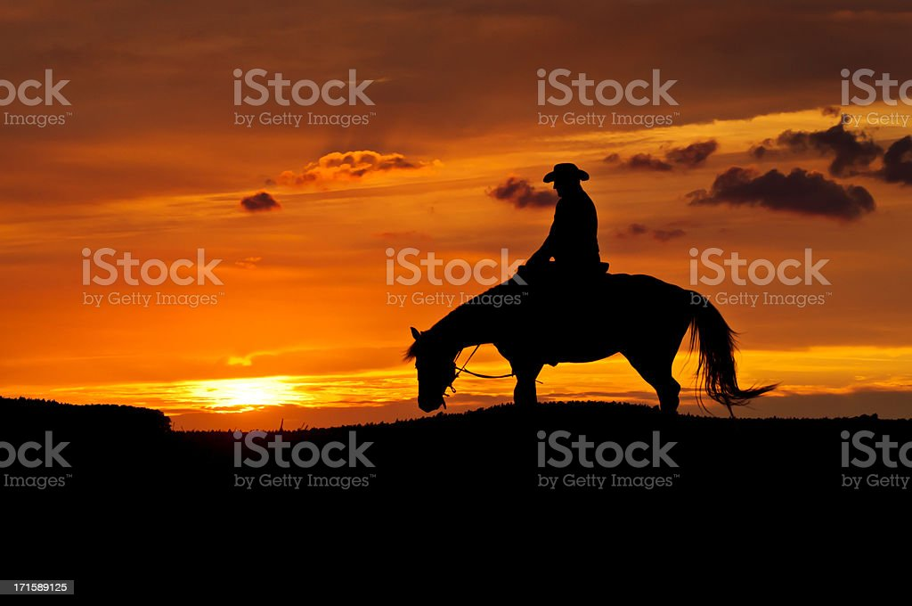 Cowboy with a horse in the sunset stock photo