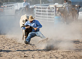 Cowboy Wrestling Steer at a Rodeo