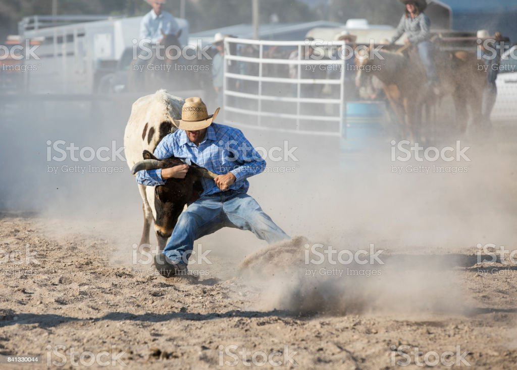 Cowboy-Wrestling-Steer bei einem Rodeo – Foto