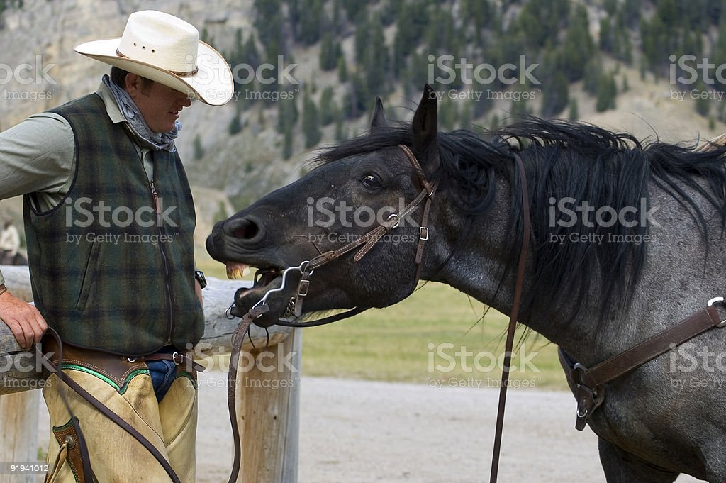 Cowboy/Horse Conversation royalty-free stock photo