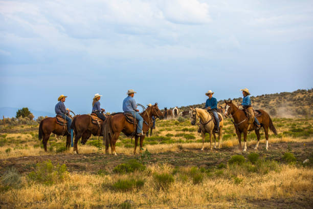 Cowboys and Cowgirls on Horseback stock photo