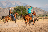 Two cowboys chasing running bull with their lassos, riding on their horses after the speeding bull. Spanish Fork, Utah, USA