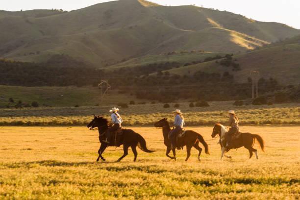 Cowboys Cowgirls Herde Wildpferde an Santaquin Tal von Salt Lake City SLC Utah USA – Foto