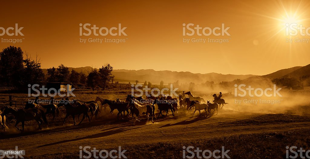 Cowboys Driving the Horses to Pasture At Dusk - Sunset stock photo