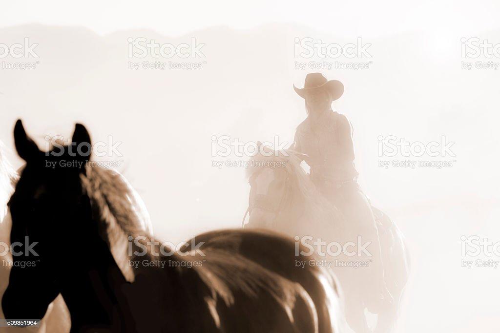 Cowboys: Female wrangler herds horses. Horseback riding. Ranch life. Sepia. stock photo