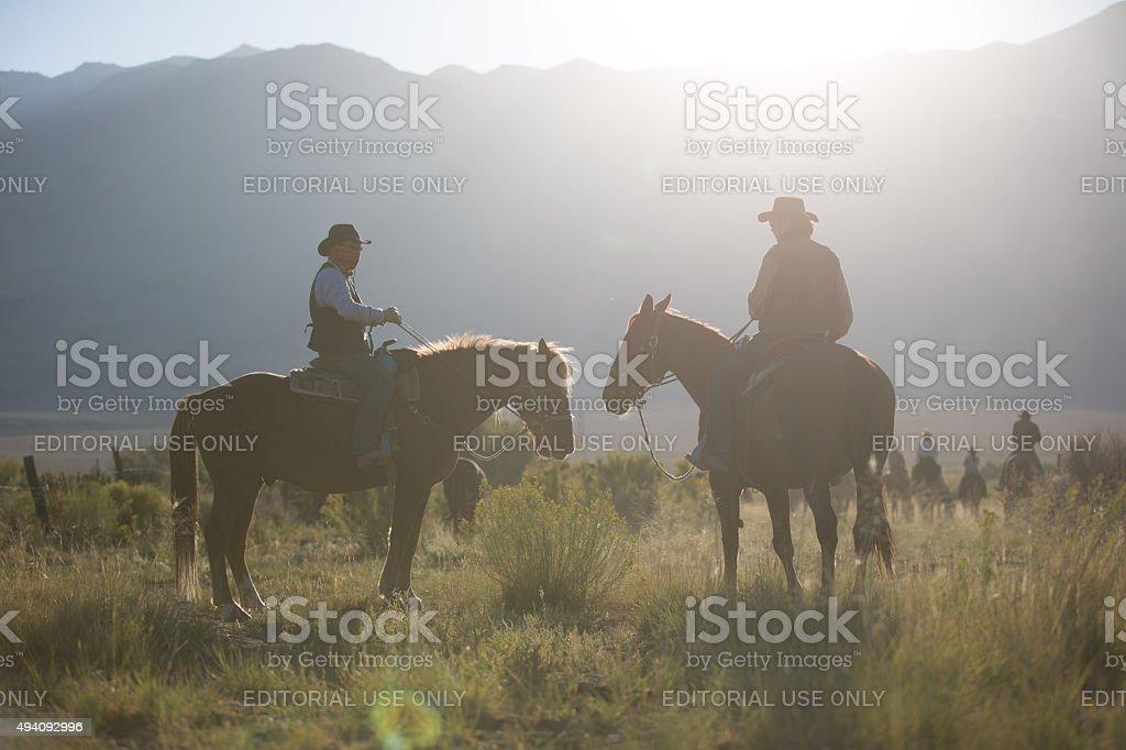 Cowboys stock photo