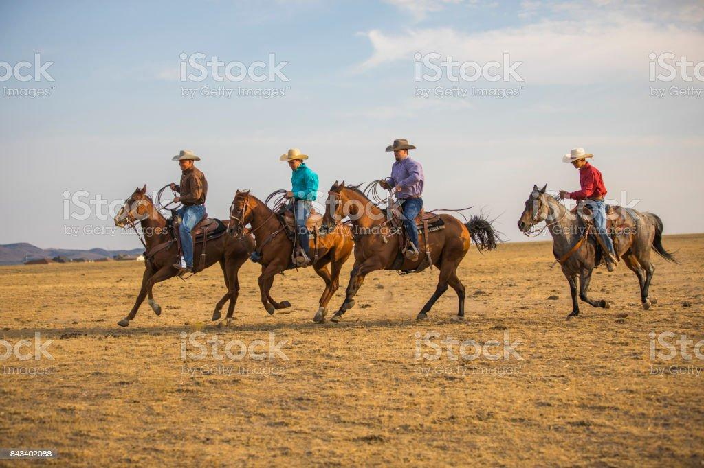 Cowboys reiten – Foto