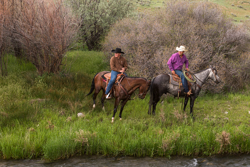 cowboys with horses at santaquin valley of Salt lake City SLC Utah USA