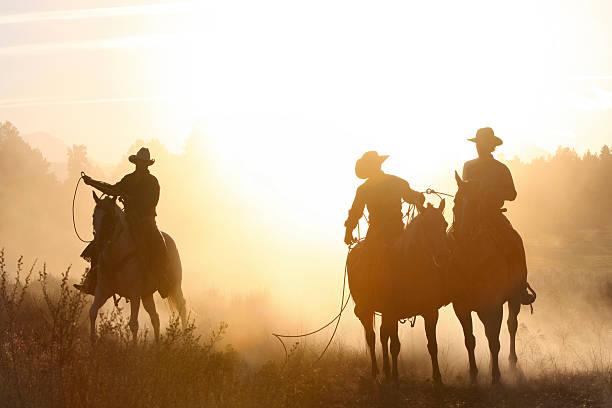 cowboys_silhouette_evening cavallo arrotondamento - ovest foto e immagini stock