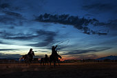 Cowgirl and Cowboy Team Roping At An Evening Rodeo