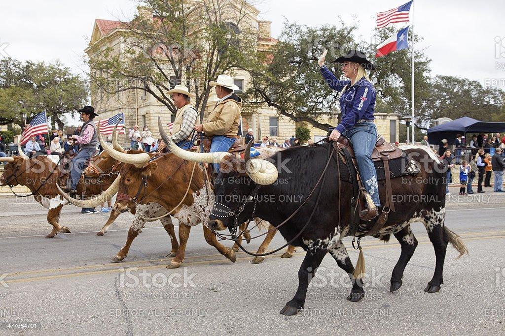 Cowgirl, Cowboys Riding Longhorn Bulls, Bandera Texas Veterans Day Parade stock photo