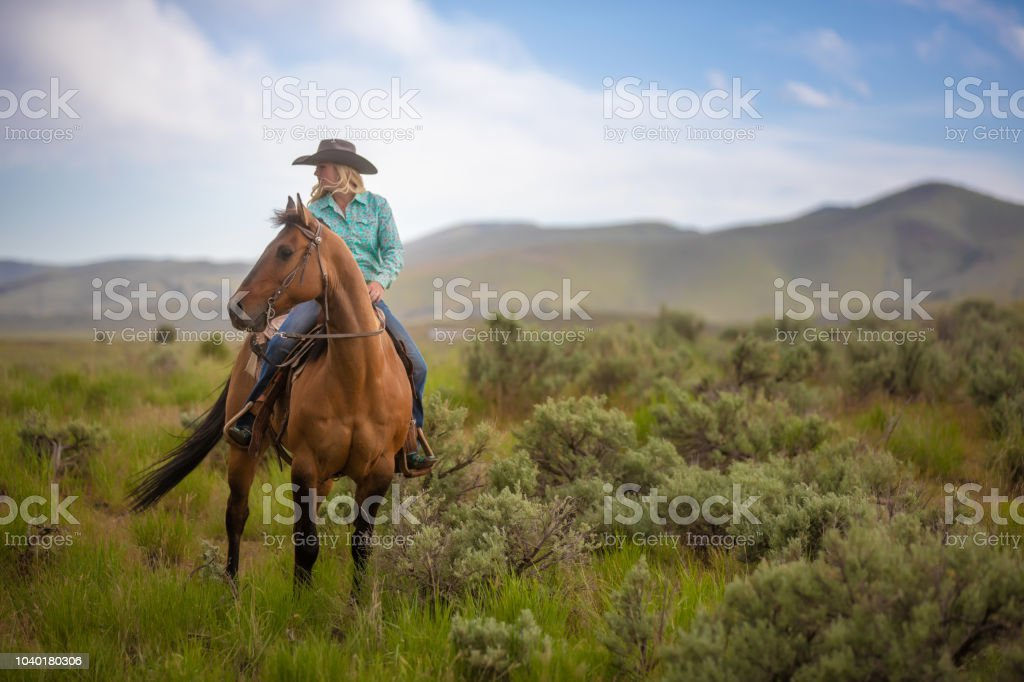 Cowgirl Horseback Riding Stock Photo Download Image Now Istock