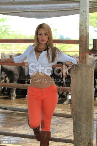 Young cowgirl or country girl posing next to the corral full of cows and bulls