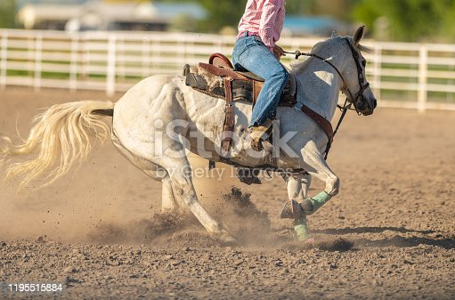 Cowgirl on horse barrel racing Rodeo