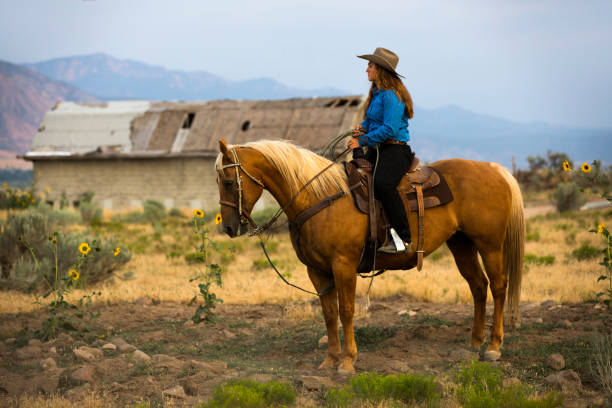 A Cowgirl on Horseback stock photo