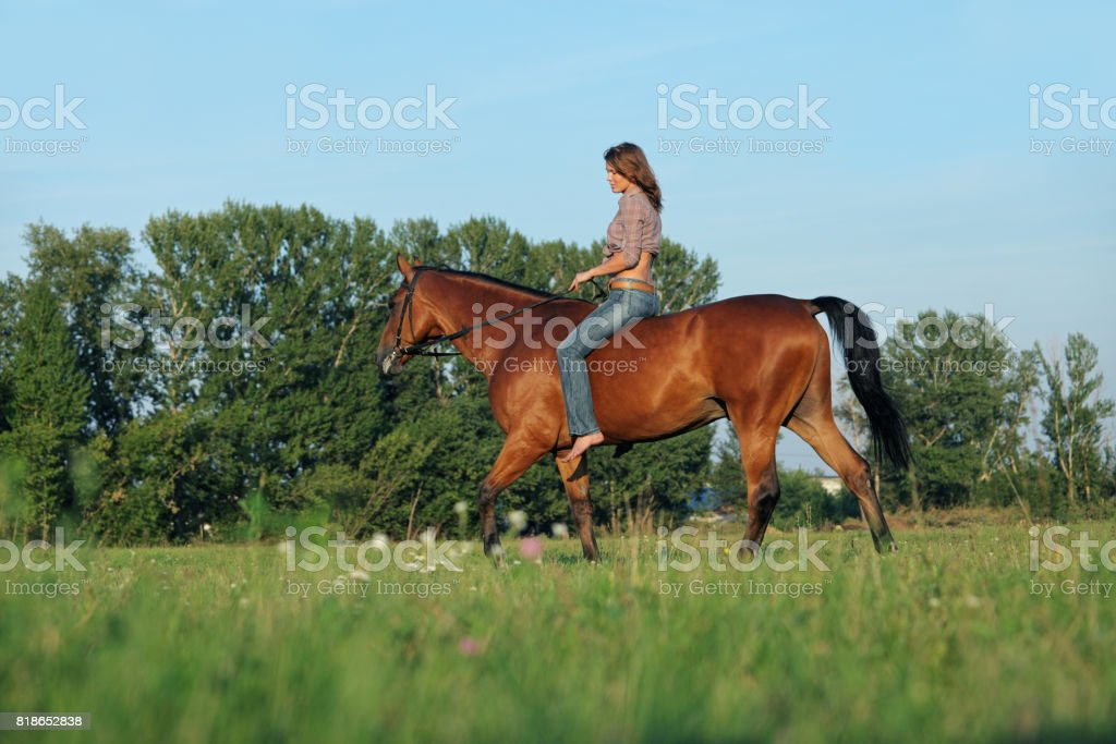 Cowgirl riding horse in sunny fields stock photo