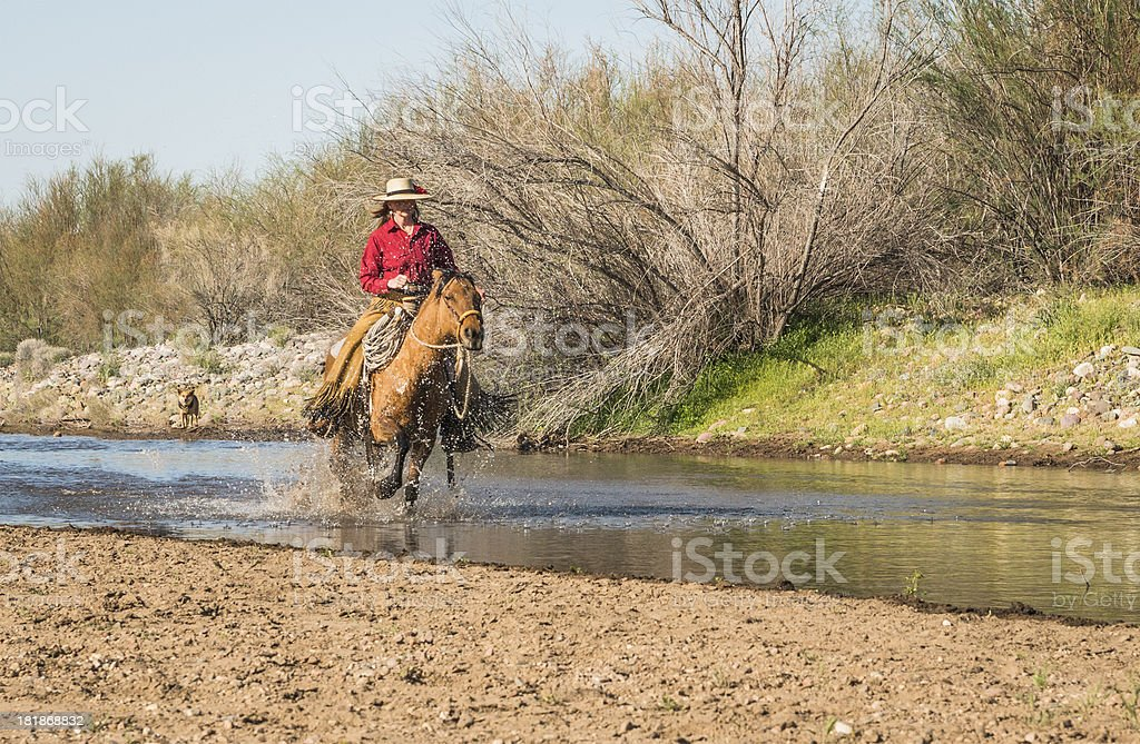 Cowgirl running horse in River royalty-free stock photo