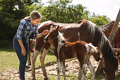 Girl bonding with her horses