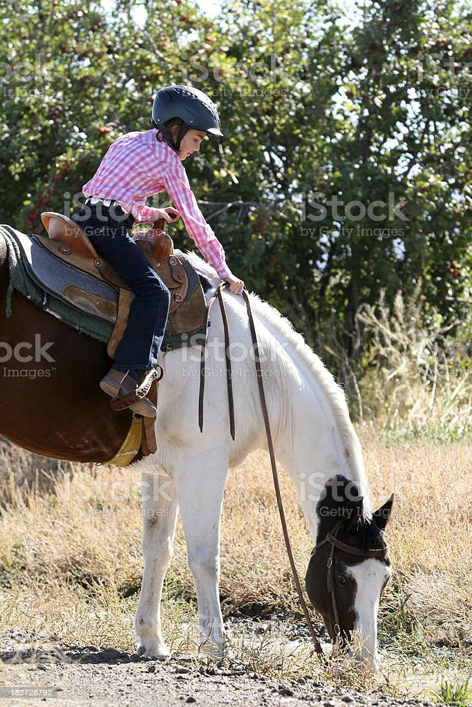Cowgirl with horse royalty-free stock photo