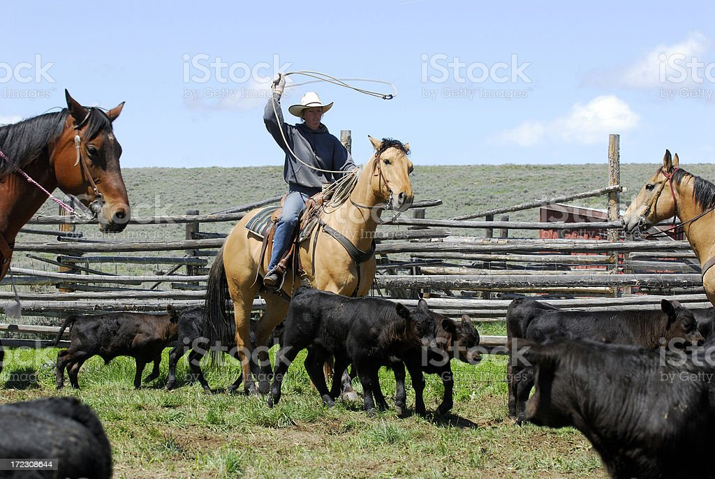 Cowgirl with Lariat royalty-free stock photo
