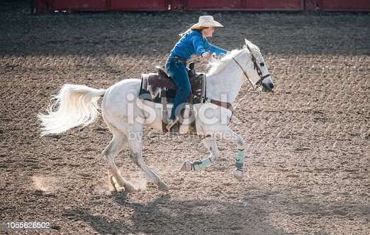 Rodeo event with wild horses and raging bulls in rodeo arena in Utah, USA
