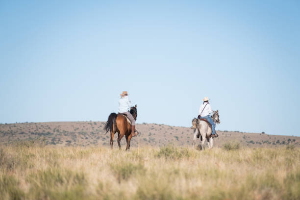 Cowgirls riding their horses stock photo