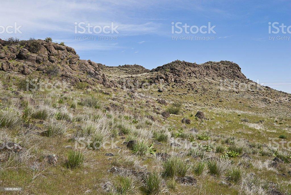 Cowiche Canyon Hillside royalty-free stock photo