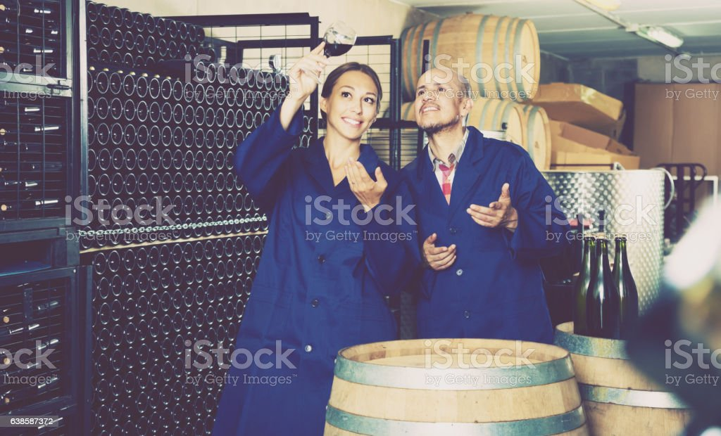 Coworkers standing in wine cellar stock photo