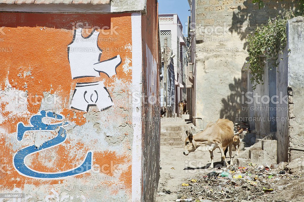 Cows dogs feeding Back Alley Dwarka royalty-free stock photo