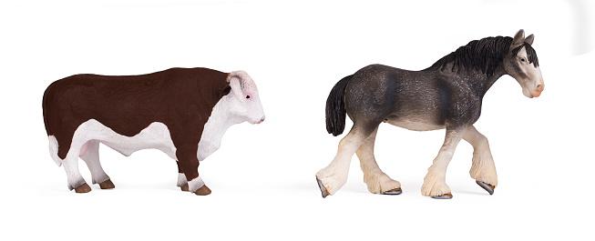 Koeien Stockfoto en meer beelden van Achterwerk