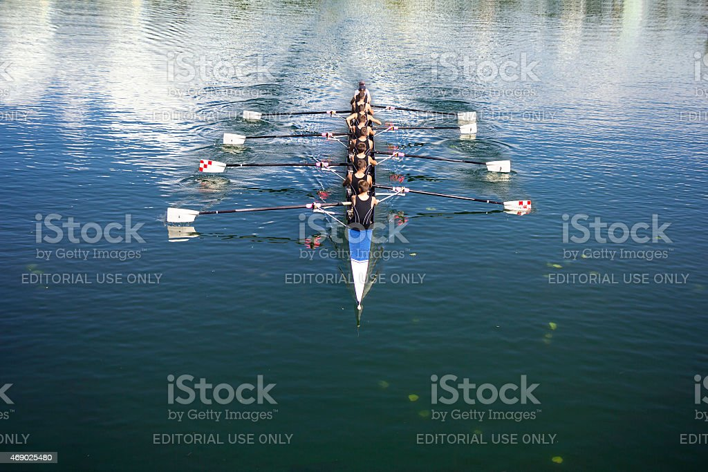 Coxed octosyllable stock photo