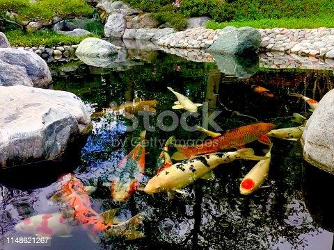 japanese garden in balboa park, san diego, ca