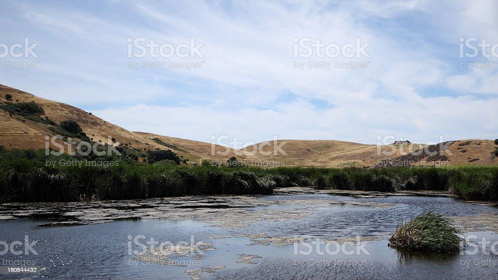 coyote hills marsh stock photo