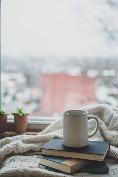 A cozy at home shot of a mug and books on a blanket by the window. stock photo