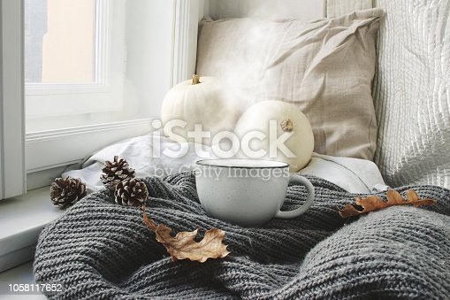 Cozy autumn morning breakfast in bed still life scene. Steaming cup of hot coffee, tea standing near window. Fall, Thanksgiving concept, white pumpkins, pine cones and oak leaves on wool plaid.