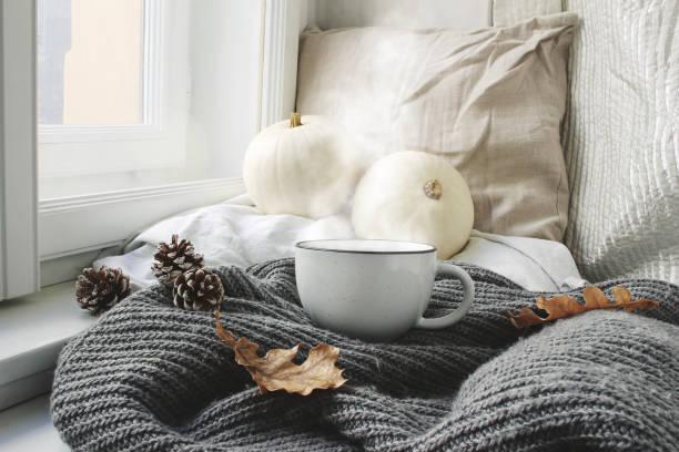 gemütliche herbstmorgen frühstück im bett-stillleben-szene. dampfende tasse heißen kaffee, tee-stand in der nähe fenster. herbst, thanksgiving-konzept. weiße kürbisse, tannenzapfen und eichenlaub auf wolle kariert. - cozy stock-fotos und bilder