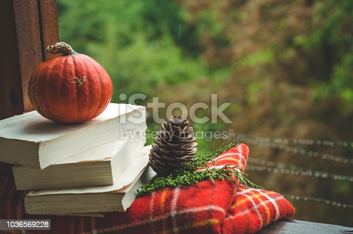 Cozy autumn still life: cup of hot coffee and opened book on vintage windowsill with red blanket, pumpkin, pine cone, candles and rain outside. Autumn. Apartment. Rain