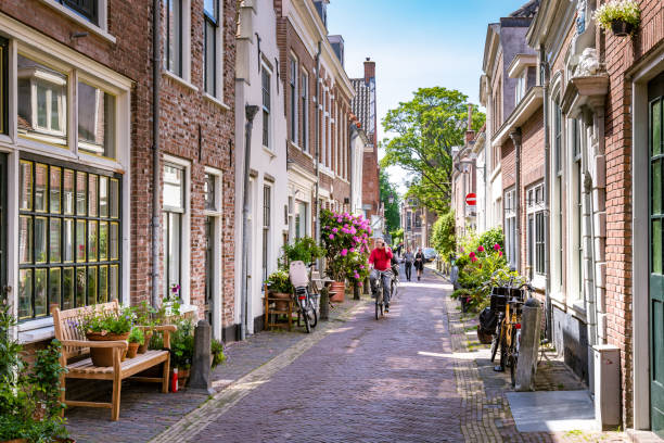 Cozy green street in Haarlem in the Netherlands Haarlem, The Netherlands - May 31, 2019: Charming little green street in the city center of Haarlem with male cyclist and his phone and pedestrians charming stock pictures, royalty-free photos & images