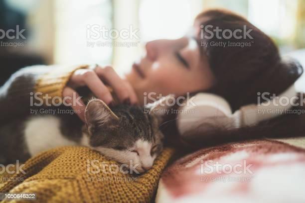 Cozy home picture id1050646322?b=1&k=6&m=1050646322&s=612x612&h=yg7nljrbie867xzzmsiwbtc ozcsh wgggsp32yteiw=