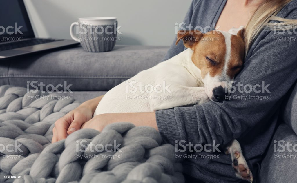 Cozy home, woman covered with warm blanket watching movie, hugging sleeping dog. Relax, carefree, comfort lifestyle. stock photo